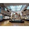 国立科学博物館 3Dビュー VR映像