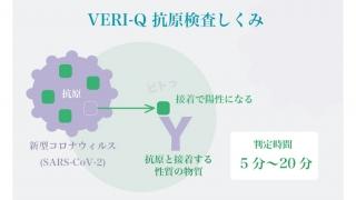 デルタ株対応【新型コロナ抗原キット VERI-Q ベリキュー】